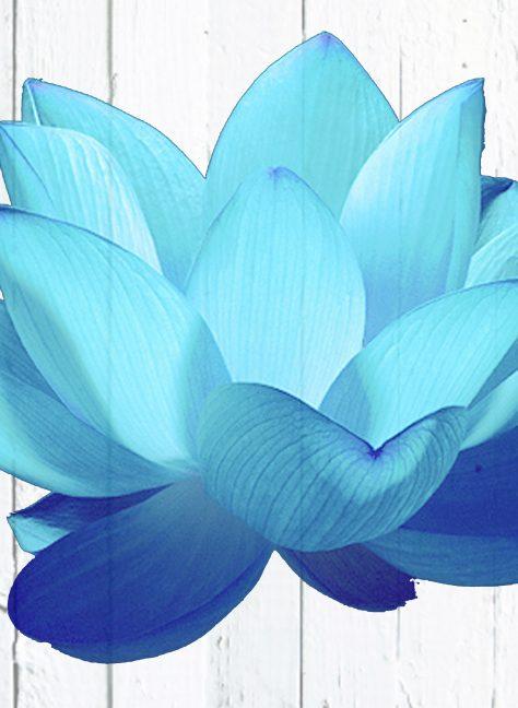 Massage met aromatherapie en healing